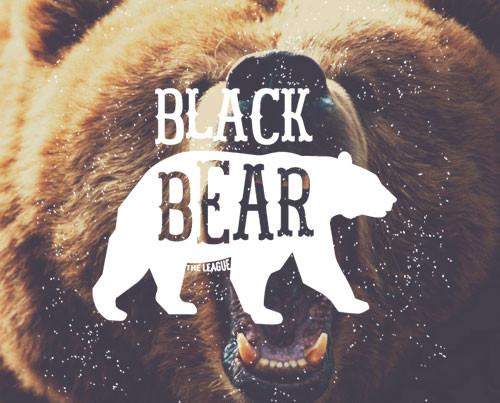 Bear-500-x-500