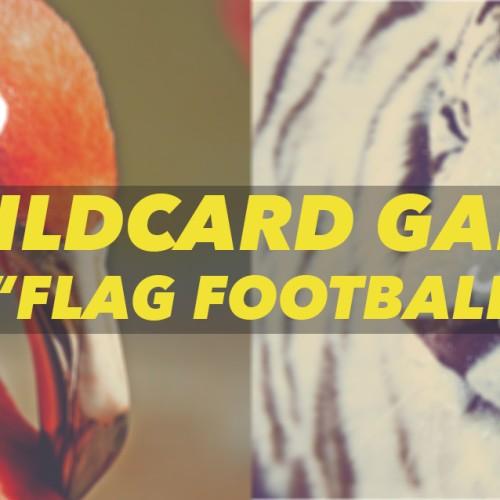 wildcard-2