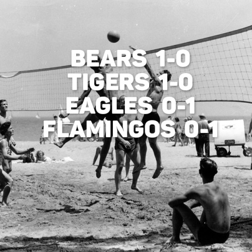 Volleyball-Results